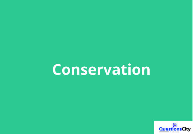 What Is Conservation