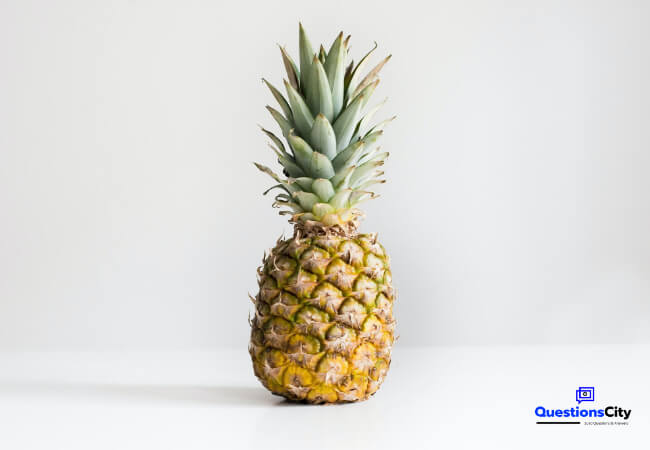 How Did The Pineapple Get Its Name