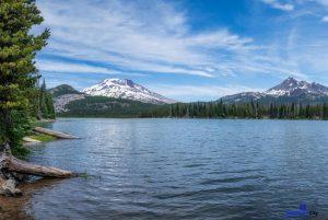 Oregon VS Washington